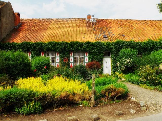 zakładanie ogrodu wokół domu