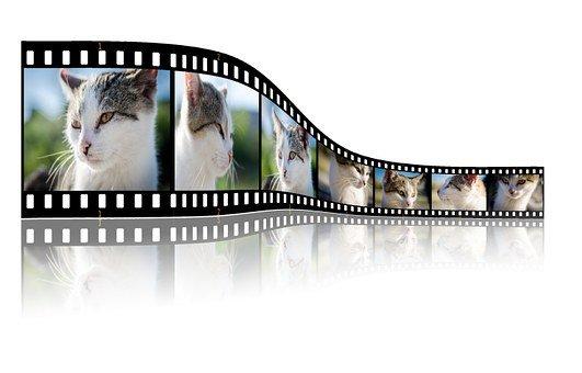 kreatywne filmy promocyjne dla firm